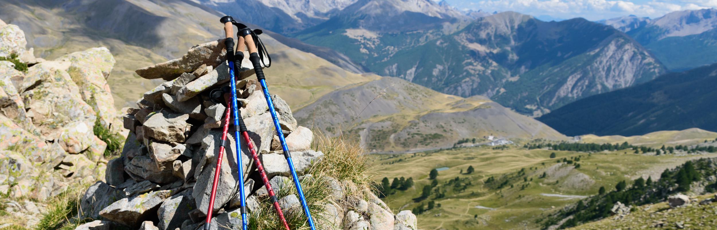 Hiking sticks and trekking poles