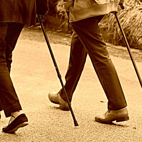 Walking sticks to purchase on your mobile