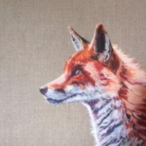 'Fox Study' Oil on linen canvas board. For Sale See Original Art/Other in tabs above.