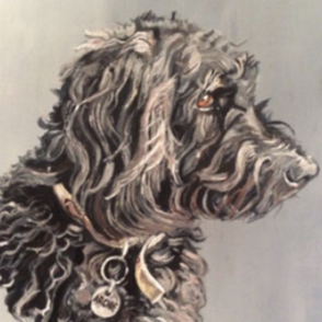 'Archie' Oil on Canvas